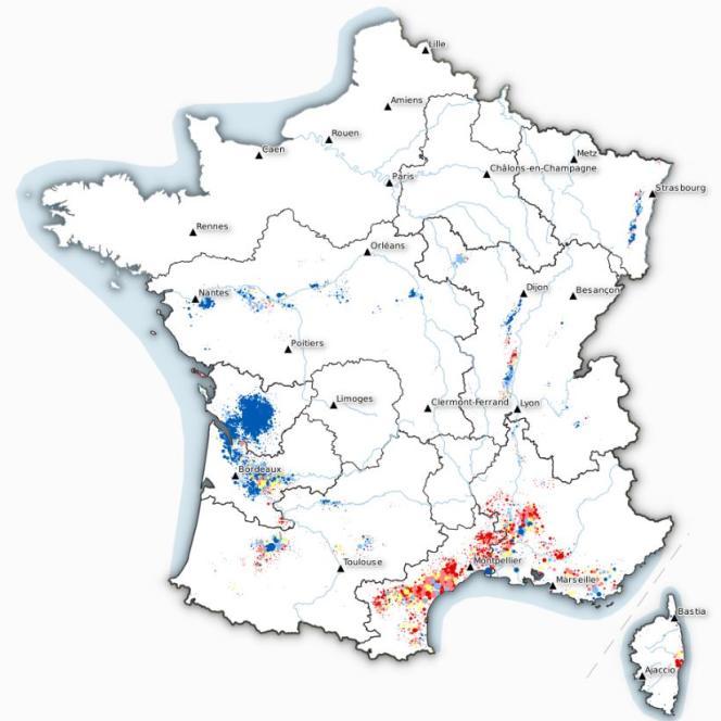 Cette carte montre les modes de vignification en France : en bleu, les caves particulières, en rouge, les caves coopératives et en jaune les systèmes mixtes.