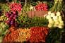 «Une alimentation végétale équilibrée peut parfaitement se substituer à une alimentation omnivore».