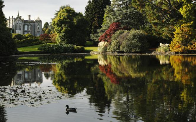 Le lac de Sheffield Park Gardens, dans le sud de l'Angleterre.