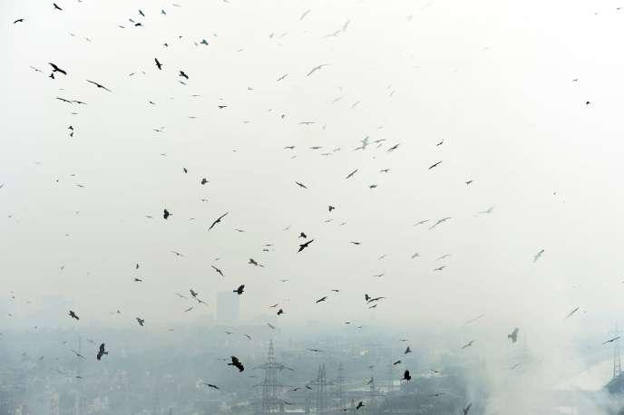 «Si l'aviation était un pays, ce serait le 7e plus gros émetteur mondial. C'est particulièrement disproportionné quand on sait que ces émissions sont causées par moins de 10 % de la population mondiale» (Photo: pollution de l'air, New Delhi, 27 septembre 2016).