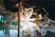 A la F Art House, l'artiste Kohei Nawa explore la rencontre entre le monde végétal et animal avec «Biota» («Fauna/Flora», 2013).