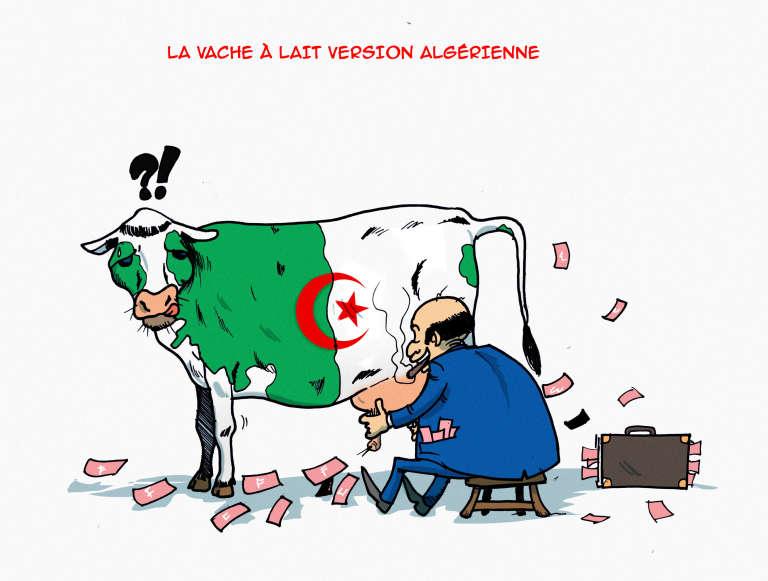 La vache à lait version algérienne.