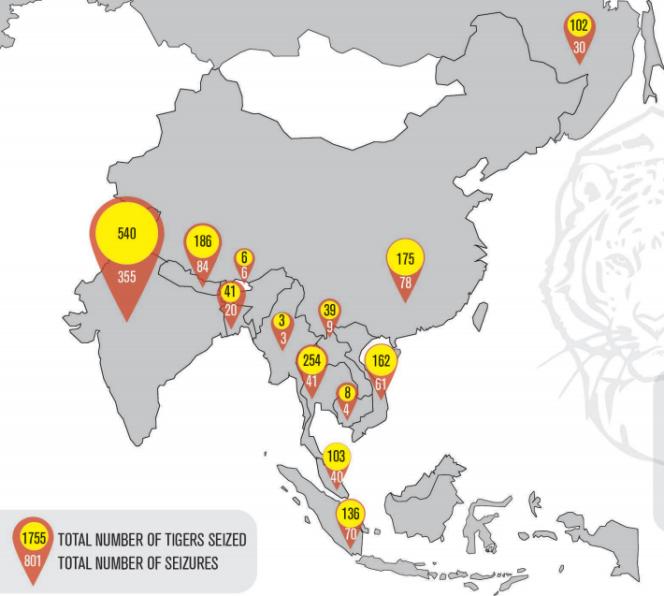 Carte issue du rapport du WWF et de Traffic sur le commerce illégal de tigres dans treize pays d'Asie, en septembre 2016.