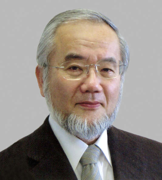 Le biologiste japonais Yoshinori Ohsumi, 71 ans, a été récompensé du prix Nobel de médecine, lundi 3octobre.