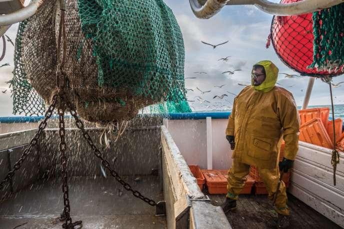 Pêcheur de harengs sur un navire certifié MSC.