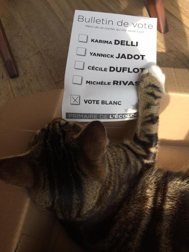 Vote de Gaston Lecat à la primaire d'EELV.