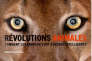«Révolutions animales. Comment les animaux sont devenus intelligents»,sous la direction de Karine Lou Matignon (Arte Editions/Les Liens qui libèrent, 576pages, 38euros).