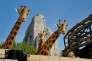 L'enclos des girafes au Parc zoologique de Paris à Vincennes.