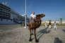 Un touriste sur un chameau en octobre à Tunis.