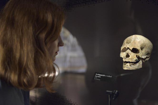 Galerie de l'homme, «D'où venons-nous»,«L'abri des ancêtres».