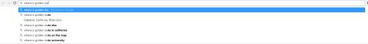 Capture d'écran sur un célèbre moteur de recherche.