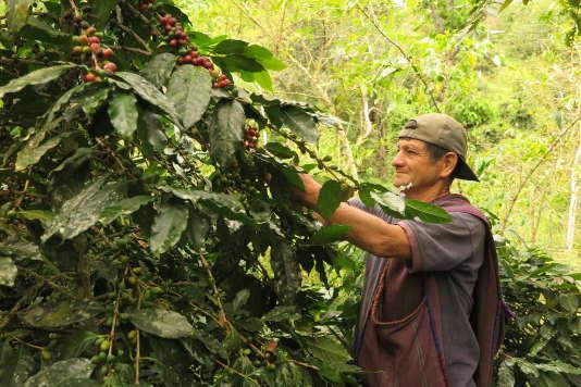 Mission d'agro-écologie dans le sud du Pérou.
