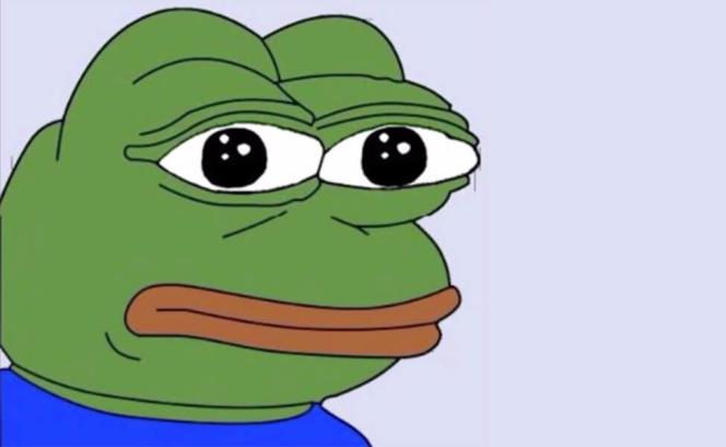 Pepe The Frog est l'un des mèmes les plus populaires sur Internet.