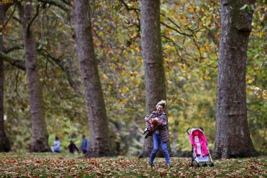 Au parc St-James de Londres, le 1er novembre.