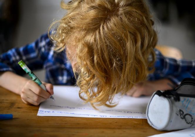 Le temps consacré chaque semaine aux devoirs est en moyenne de4,9 heures dans les pays de l'OCDE.