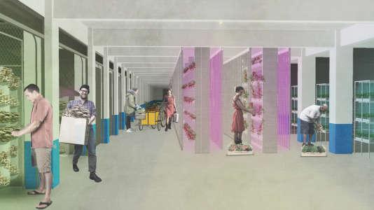 Perspective de la ferme de culture souterraine, située au 2e sous-sol du parking de la résidence du 26 rue Raymond-Queneau dans le 18e arrondissement à Paris.