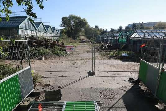 Les serres techniques (à gauche) et les serres chaudes (à droite) que le projet d'extension de Roland-Garros doit faire disparaître. Les serres monumentales, elles, ne seront pas touchées par le projet.