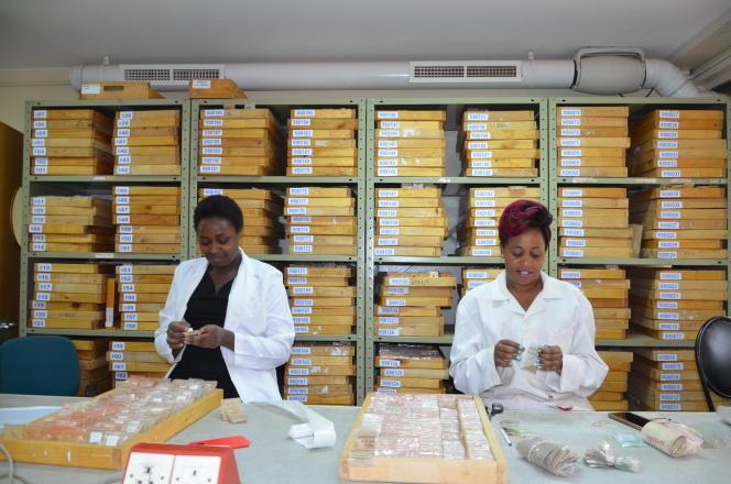 Archivage des sols au laboratoire de diagnostic spectral de l'ICRAF, à Nairobi.