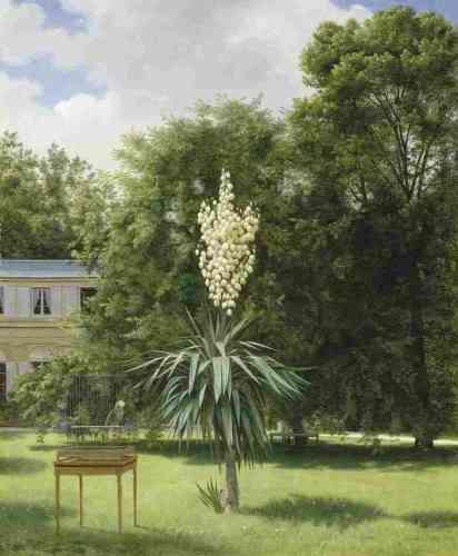 «Ce tableau aurait-il retenu l'attention de la postérité si Baudelaire n'en avait pas parlé? Ce n'est pas sûr. Mais le poète est sensible à la composition théâtrale – très artificielle, pour ne pas dire surréaliste – de ce jardin, où le yucca s'affiche avec une insolente précision jusque dans le moindre détail.»