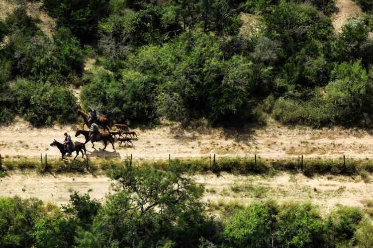 Ces agents à cheval cherchent un homme en fuite à LaJoya (Texas).