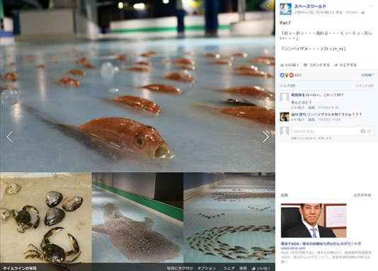 Capture d'écran de la page Facebook du parc Space World, avant qu'elle soit effacée.