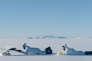 Thomas Blanchard et Thomas Scimeca dans le film français deSébastien Betbeder,«Le Voyage au Groenland».