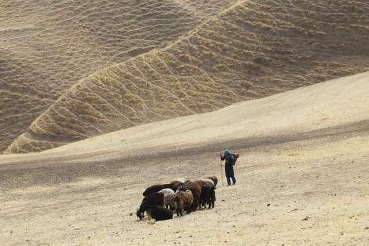 Une image du film afghan, danois, français et suédois de Shahrbanoo Sadat,«Wolf and Sheep».