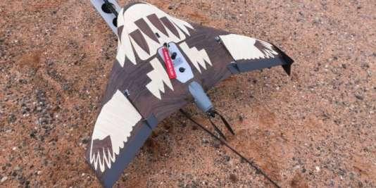 Un drone travesti en jeune aigle prêt à décoller sur sa rampe de lancement