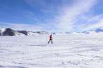 En novembre, un coureur lors du douzième marathon de l'Antarctique.