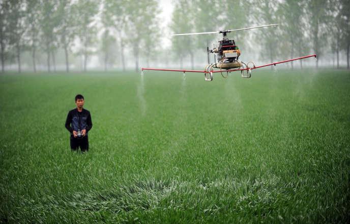 Cette photo prise le 15 avril 2014 montre un homme contrôlant un drone pour pulvériser des pesticides sur une ferme à Bozhou, dans la province d'Anhui, dans le centre de la Chine.