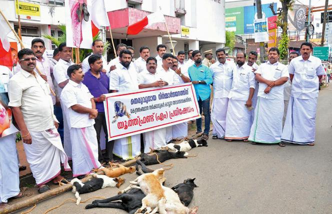 Le 26 septembre,au Kerala, des membres d'un parti local exhibentdix cadavres de chiens qu'ils ont battus à mort.