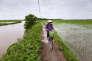 Parmi les projets qui ont bénéficié de subventions de l'Agence française de développement: la gestion de l'eau dans le bassin du fleuve Rouge (Vietnam).