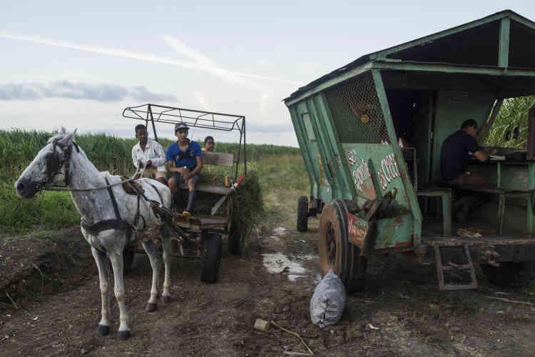 Dans la province de Camaguey, les paysans attendent le cortège. Le 1er décembre.