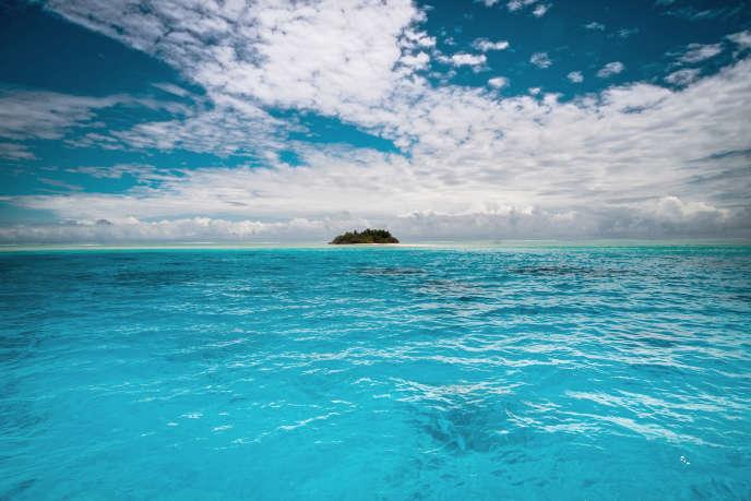 Les zones hypoxiques sont des régions où le taux d'oxygène est au plus bas, provoquant l'asphyxie de la faune marine (photo d'illustration).