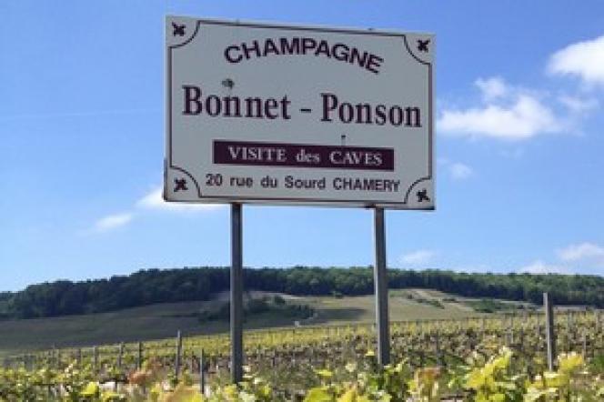 A Chamery, le domaine Bonnet-Ponson compte huit chambres d'hôtes surplombant les vignes, bientôt transformées en hôtel, et un restaurant.