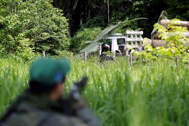Une opération à Novo Progresso, le 11novembre. Un policier a été abattu, en juin, dans cette région où 25000 personnes vivent de la contrebande de bois.