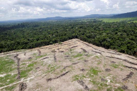 Une vue aérienne au Brésil.
