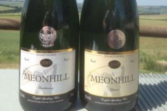 Didier Pierson, un des tout premiers vignerons à traverser la Manche, a acquis quatre hectares dans le Hampshire, sur la côte sud, en face de l'île de Wight. Il y plante les trois cépages champenois et commercialise sa première récolte de «sparkling wine» en2011, sous l'appellation Meonhill.