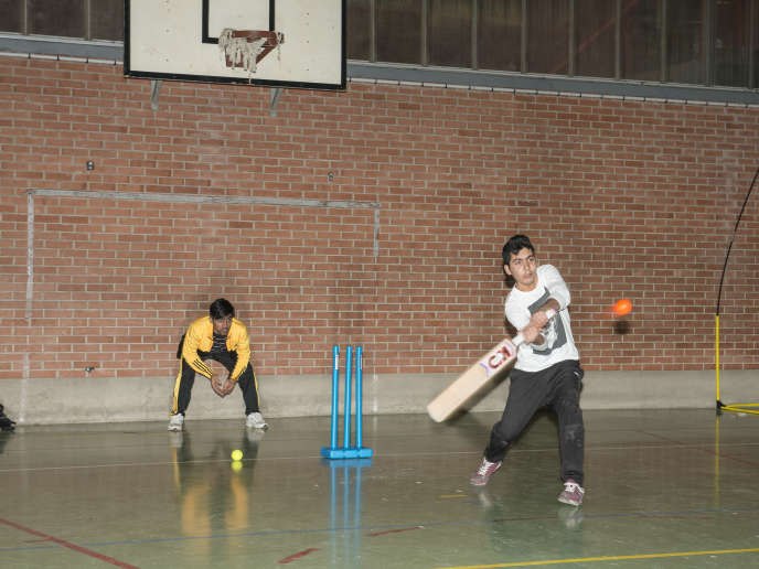 Des joueurs du Saint-Omer Cricket Club Stars (SOCCS) pendant l'entraînement dans la salle des sports Charles de Gaulle, à Saint-Omer.
