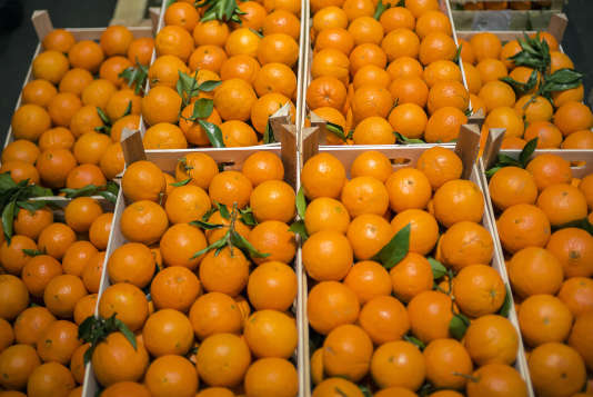 Oranges are pictured at the Rungis international market in Rungis, outside Paris, on December 23, 2014. AFP PHOTO / LIONEL BONAVENTURE / AFP PHOTO / LIONEL BONAVENTURE