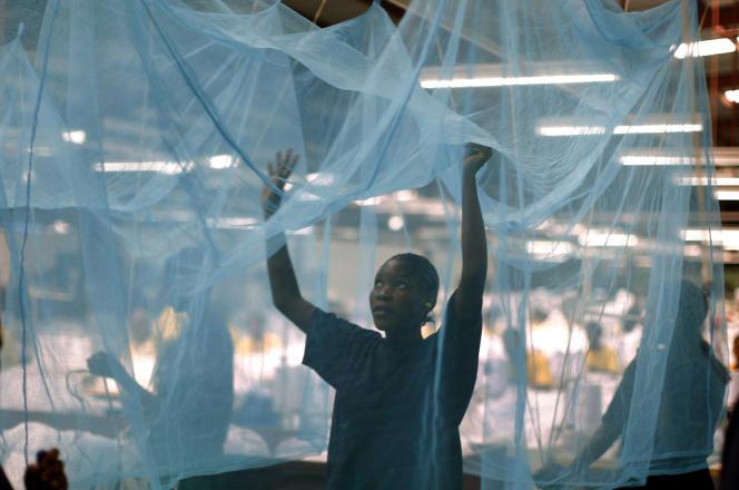 Une travailleuse, le 18 février en Tanzanie.