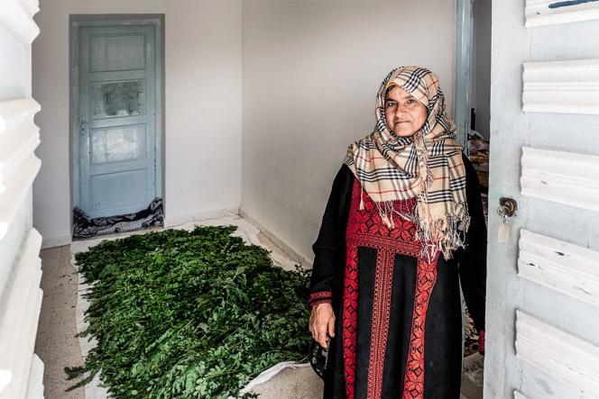 Samira Ismail est l'une des paysannes que l'entrepreneuse franco-tunisienne Sarah Toumi a réussi à convaincre de se lancer dans l'agriculture de moringa, un arbre qui, comme l'acacia, est très économe en eau.