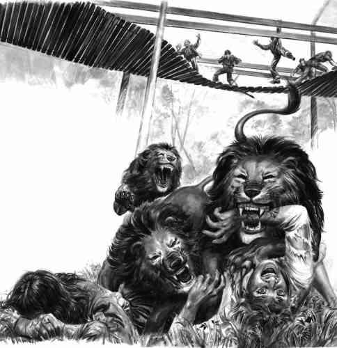 Le dompteur jette sa femme au lion (1979)