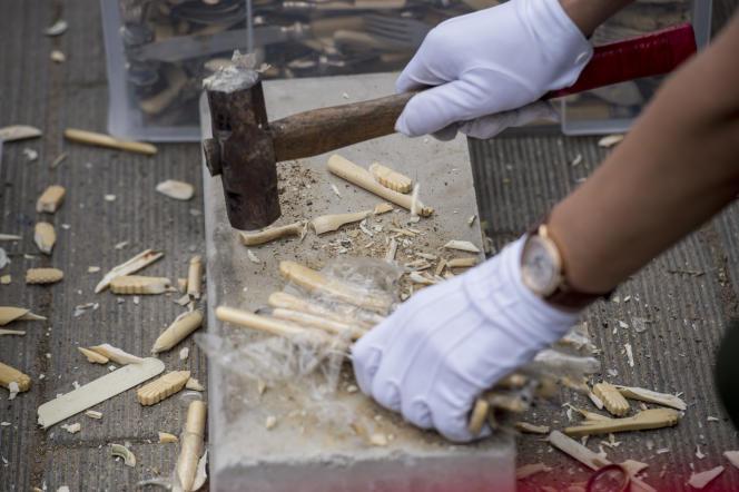A Beijing, en 2015, un employé travaillant l'ivoire.