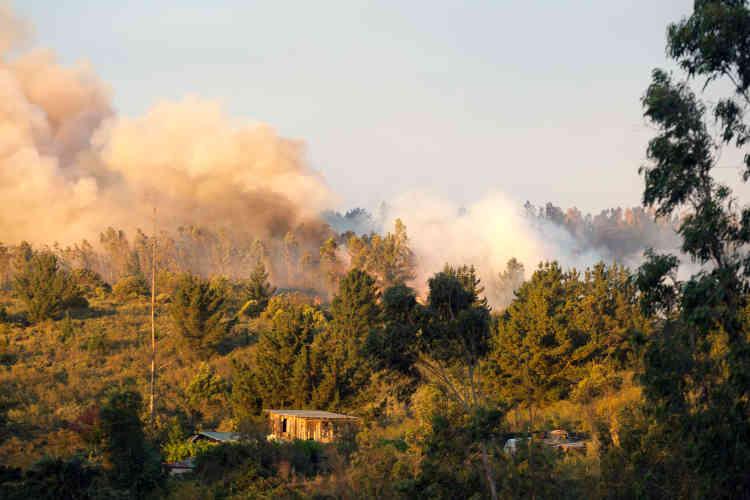 Une cinquantaine d'hectares sont déjà partis en fumée, selon la première estimation du bureau national des situations d'urgence.