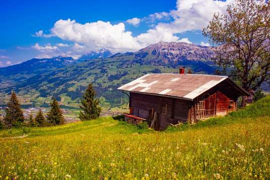 The Swiss Alps are ideal for a family trip.