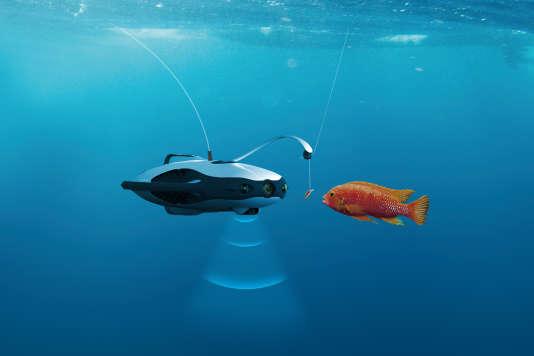 Le PowerRay utilise une caméra et un sonar pour repérer les poissons.