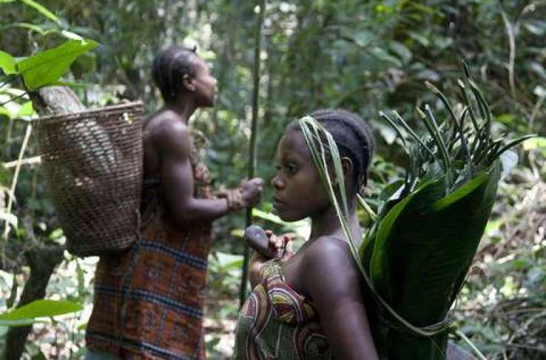 Femmes baka dans le sud-est du Cameroun.