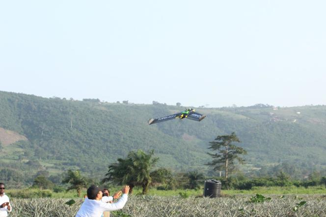 Un drone à aile fixe de l'entreprise Airinov s'envole pour cartographier un champ d'ananas près d'Accra, au Ghana, en octobre 2016.