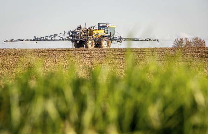 Pulvérisation de pesticides dans un champ à Godewaersvelde, dans le département du Nord, en avril 2015.